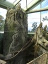 Buffalo Zoo Rainforest Image 2