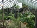 Buffalo Zoo Rainforest Image 3
